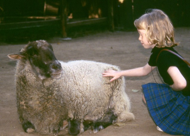 Melissa with a Sheep