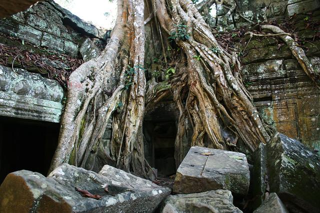 Angkor temple.