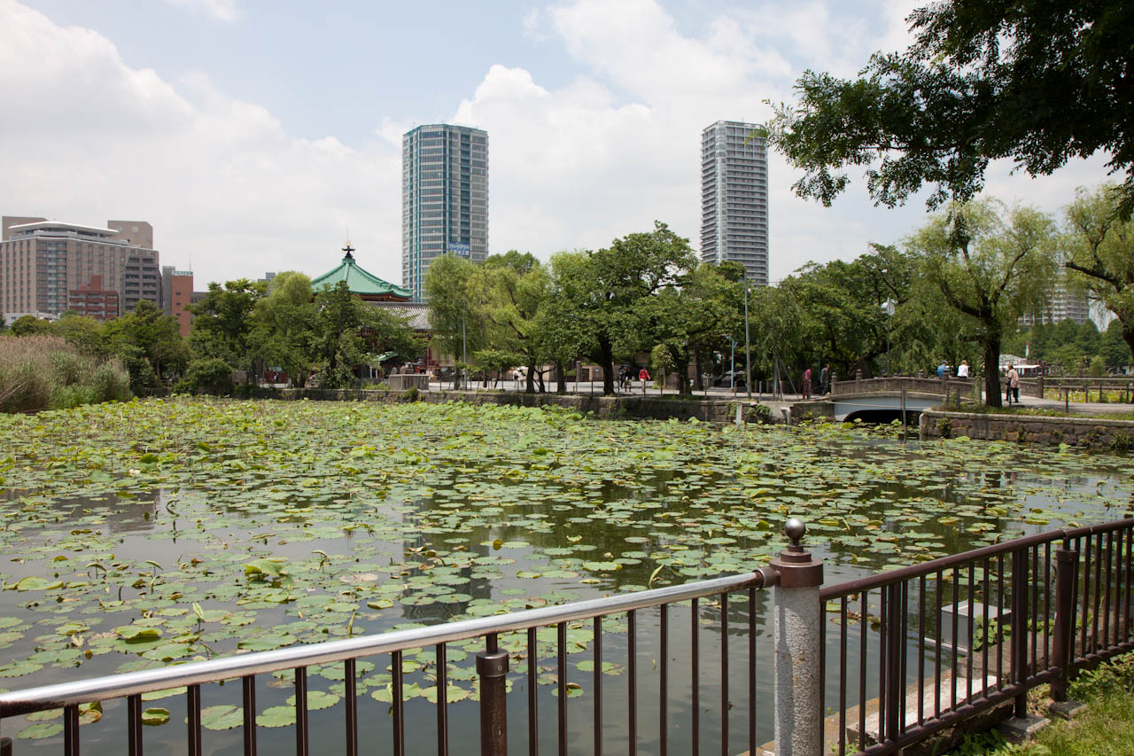 Lake in Ueno Park