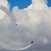 Small photo of Air Power Day 2010 970