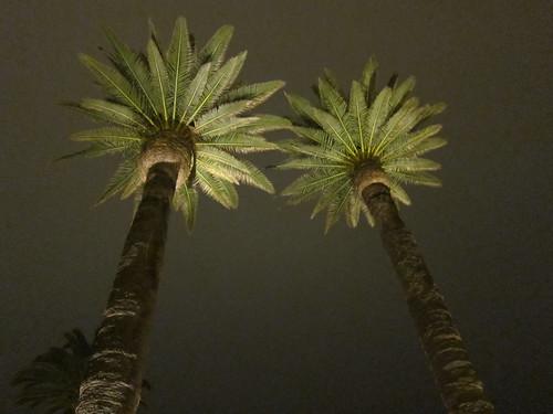 Hotel Del Coronado, Forum on Franchising IMG_2830