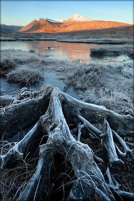Rannoch Moor Frost