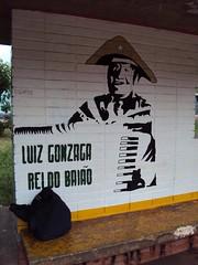 Luiz Gonzaga Rei do Baião