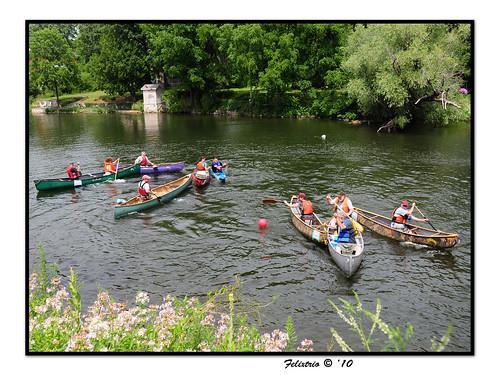 Canoe Polo on the Speed River by felixtrio
