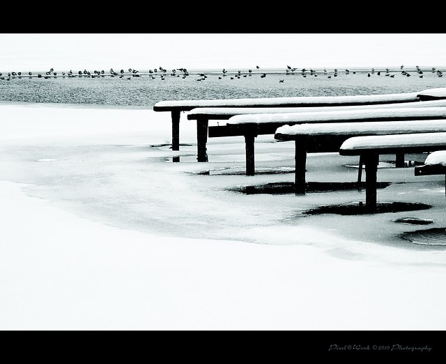 Winter Tranquility 2010 (Hannover Maschsee)