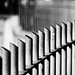 Patterns in a fence by Steve-h