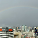 Panorama: cranebow over Wellington CBD