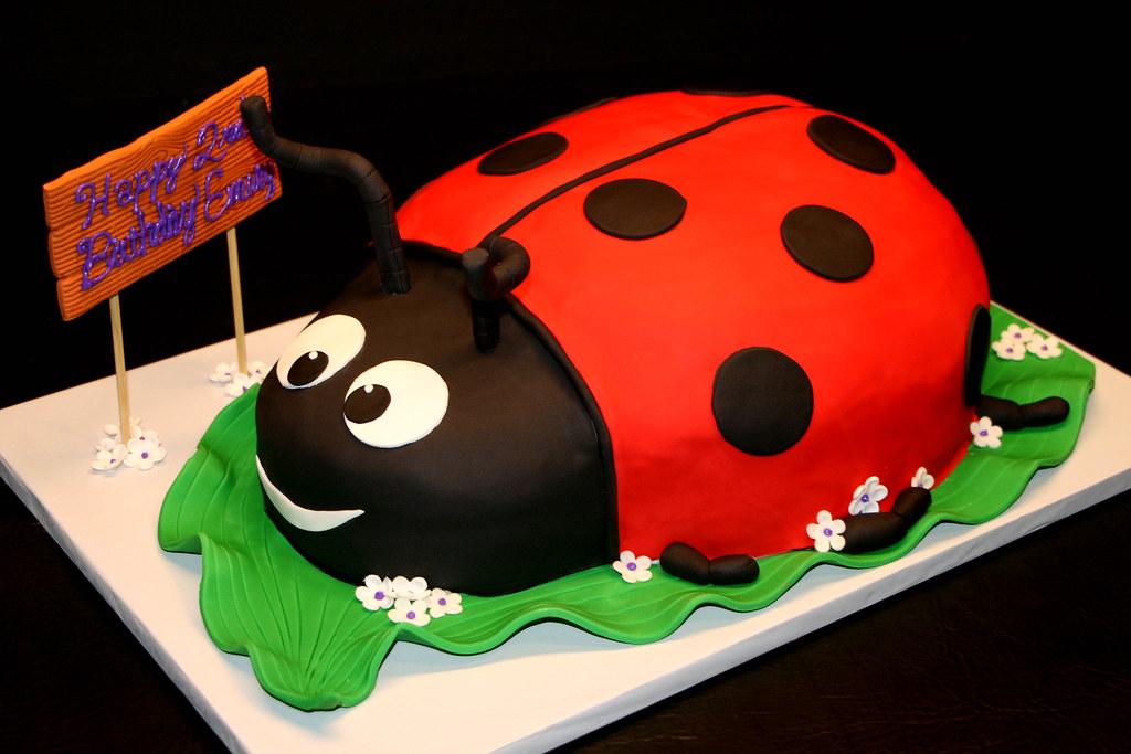 Ladybug 2nd Birthday Cake A Photo On Flickriver