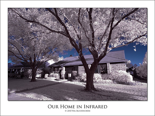 house tree home ir dallas nikon texas d70 infrared elm