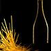 Pasta & Wine #1 by Erik Christian Photography