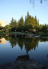 Nice park near my home