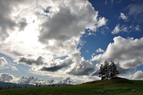 blue sky cloud mountain storm tree bluesky knoll