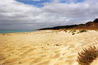 Eagle Bay, Western Australia, 1996