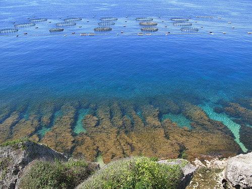 擁有蔚藍海岸的小琉球,當地居民引以為傲,認為在台灣海岸劣化之際,最能療癒人心的海岸。(攝影:沙浪)