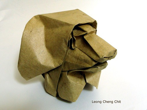 Paper Lion 9 Photos | LION HEAD | 974