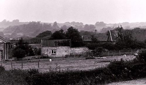 monochrome farmhouse sunrise landscape blackwhite sleep farm dorset dreamy moring начинизавиждане higherkingcombe