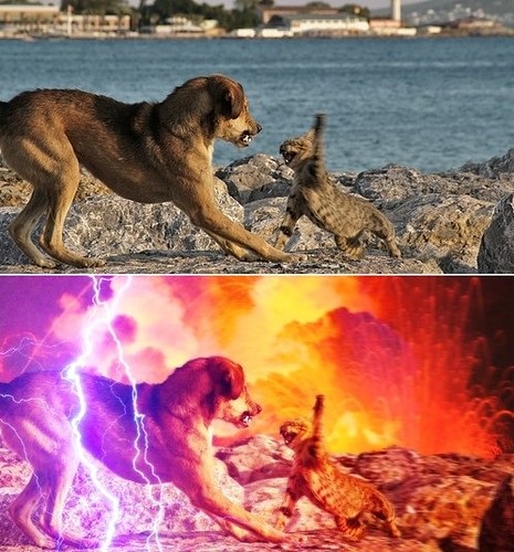 Epic and Epic-er (via Reddit + TheDailyWhat) | See thedw us