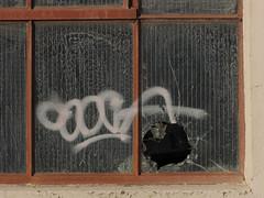 Tagged Window