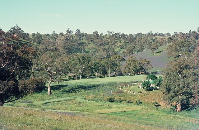Header of Adelaide Hills