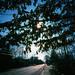 Kodachrome Wide & Slim by Michael Raso - Film Photography Podcast