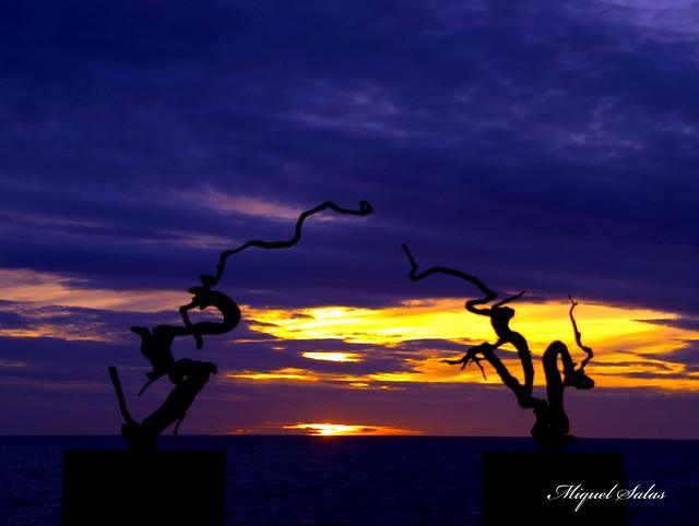 Sunset  P2269594p