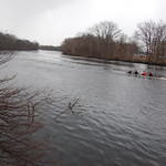 Charles River, 3 March 2010: The first day of the sculling boats rowing down the river under grey skies