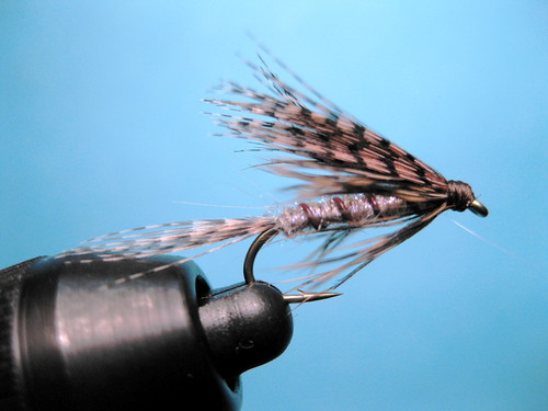 Uv march brown wet cahill fly tying video the caddis fly for Wet fly fishing