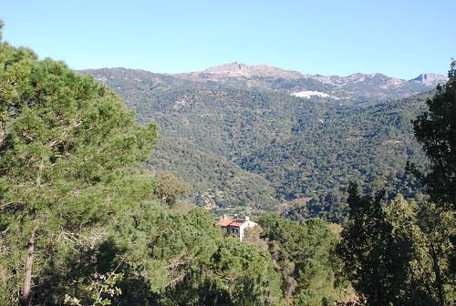 Cloud House Farm, Genalguacil, Andalucia