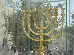 tree, menorah, candle holder,