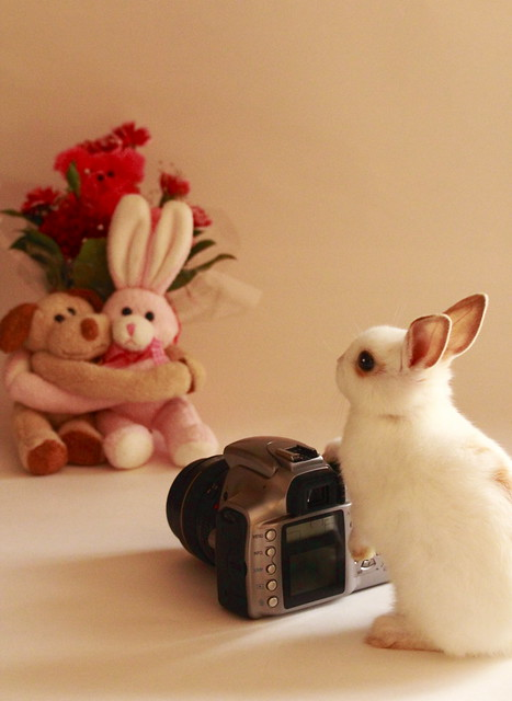 Future Photographer (^0^)