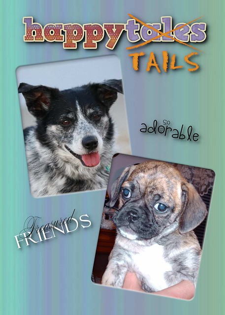 Happy Tails Pet Resort And Spa Winnipeg Mb