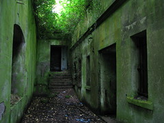ancient history, green, alley, rural area, infrastructure,