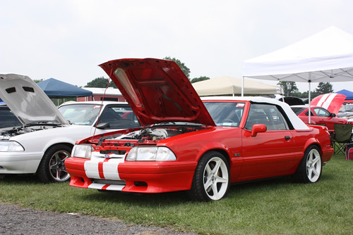 Limited Edition 1992 Mustang