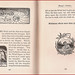 Small photo of Aesop's Fables - The Sun