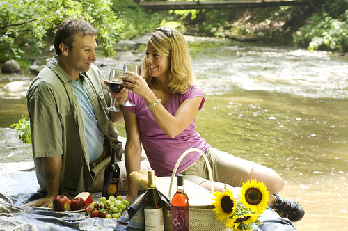 Finger Lakes Wine is made for a Picnic rv internet