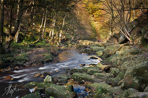 Autumn view near Thomason Foss