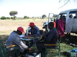 Testing a tsetse-repellent technology in Kenya