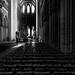 Cathédrale Notre-Dame de Bayeux by g_heyde