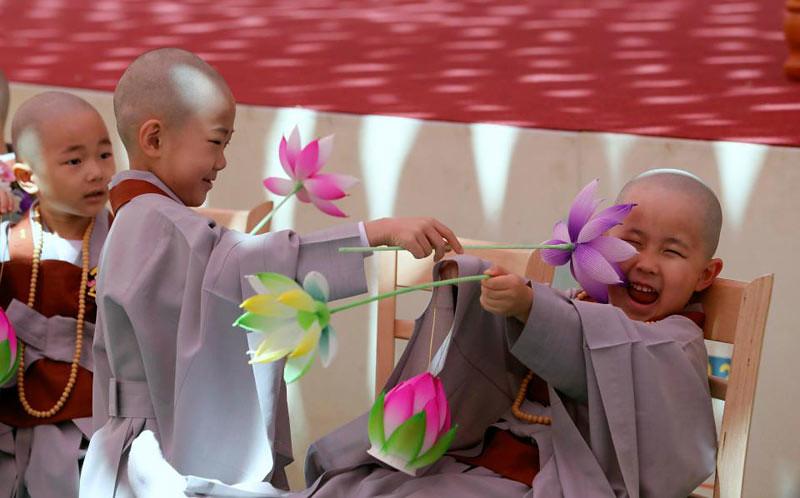 Seorang samanera kecil merasa geli saat temannya menggelitiknya dengan bunga lotus artifisial.