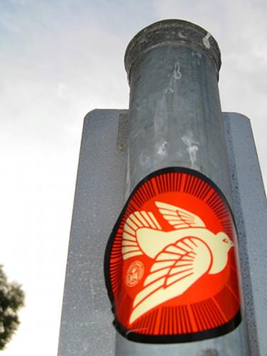 20091027 obey-peace-dove
