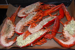 crab, animal, crab boil, seafood boil, lobster, crustacean, fish, seafood, invertebrate, food,