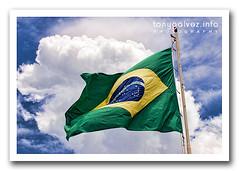 Brazilian flag / bandera brasileña
