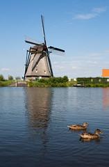 Kinderdijk (IMG_7574)