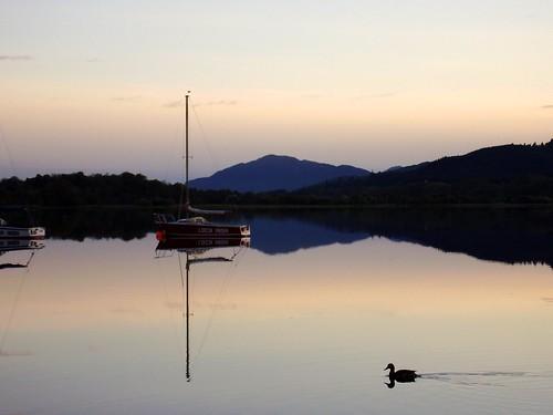 reflection geotagged mirror calm loch stillwater aviemore insh mirroredimage calmwater lochinsh supershot swimmingduck mywinners reflectedwater geo:lon=3921432 geo:lat=57117255