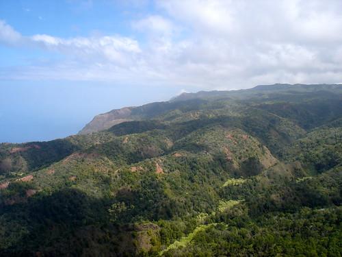 Sicherheit auf Reisen: Dschungel