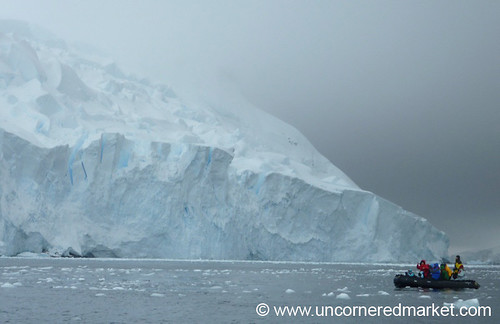Zodiac Cruising Around Hanusse Bay - Antarctica