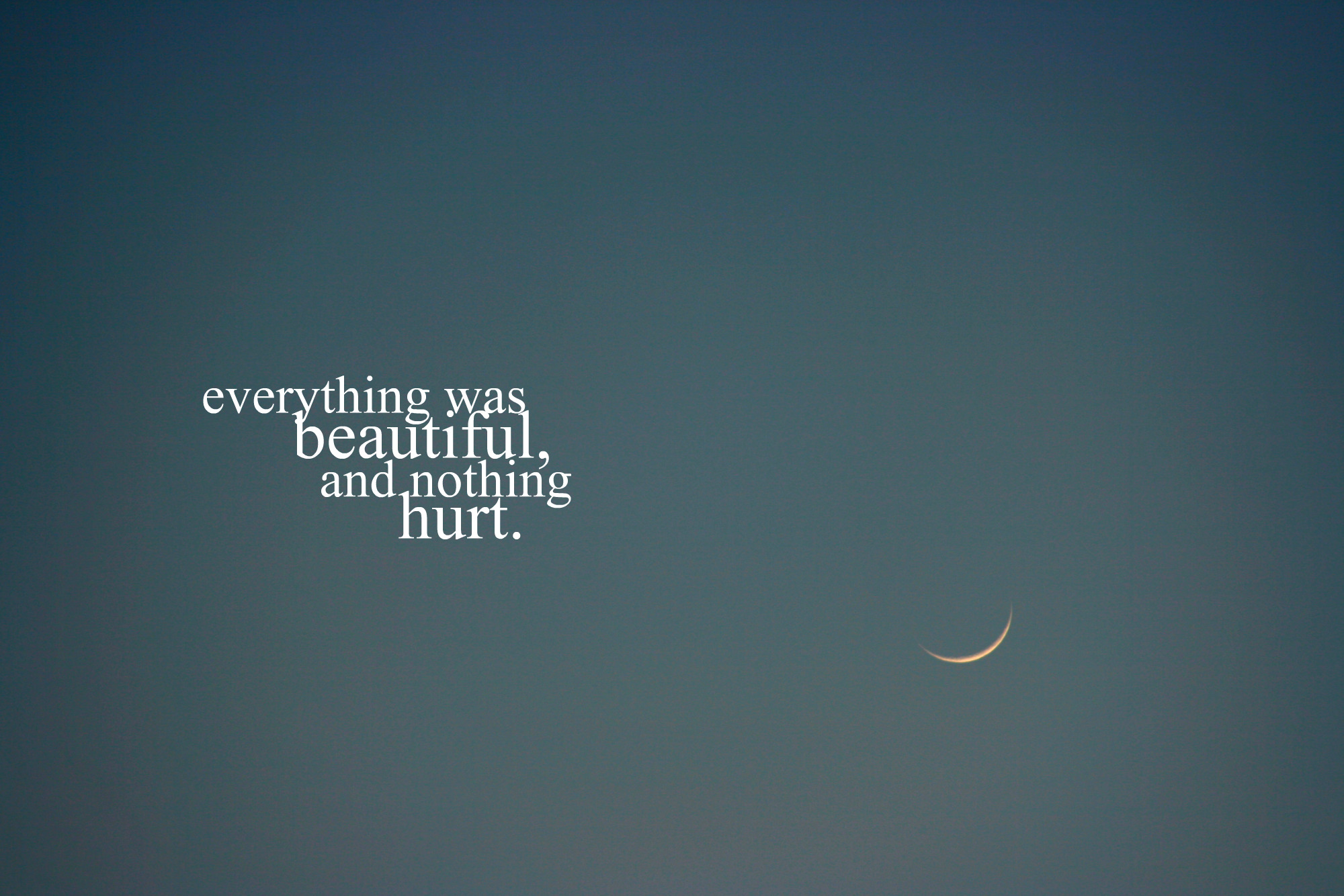 everything was beautiful and nothing hurt. | Flickr ...