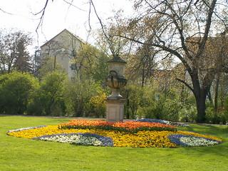 Blumen lächeln goldig übergossen unter Dresdens Himmel sanftem Blau 003