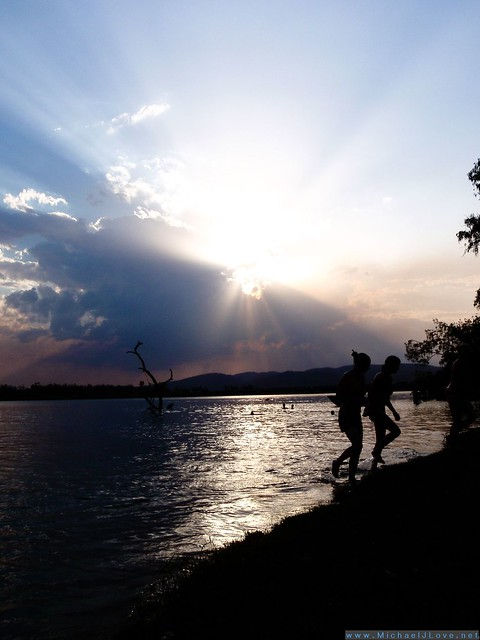 The Swim Beach Tree Ord River Kununurra - Silhouetted Swimmers