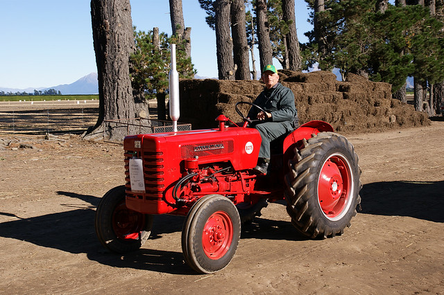 1960 International Tractor : International b tractor seen at the vintage